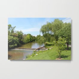 Day in the park Metal Print
