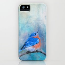 Little Boy Blue iPhone Case