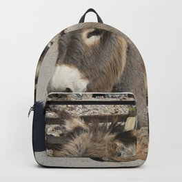 Donkey of Oatman Backpack