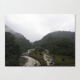 Rainforest Stream Canvas Print