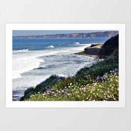 La Jolla Beauty by Reay of Light Photography Art Print