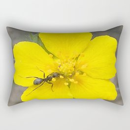 Watercolor Ant, Ant 01, and Alpine Avens, RMNP, Colorado Rectangular Pillow