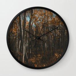 Colorado Aspen Grove Photograph Wall Clock