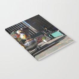 NEW YORK- Broadway Notebook