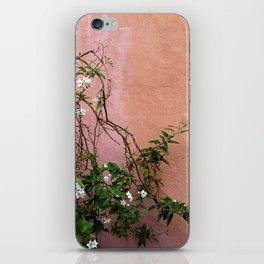 Wall Flower iPhone Skin