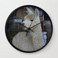 alpaca Wall Clocks featuring White Alpaca by Deborah Janke