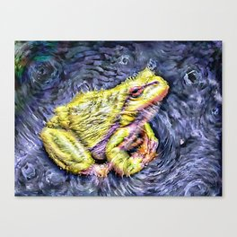 The InFocus Happy Frog Collection X Canvas Print