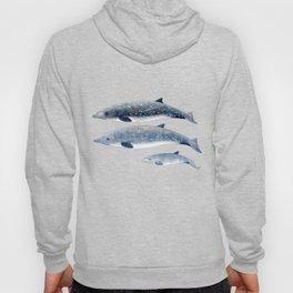 Blainville´s beaked whale Hoody
