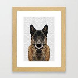Malinois - Belgian Shepherd Framed Art Print