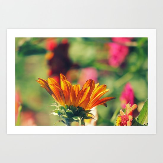Sweet Flower of Mine Art Print