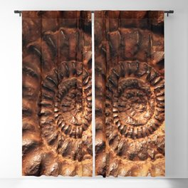 Fossil Blackout Curtain