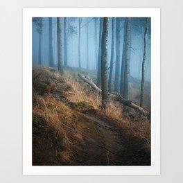 Foggy forest landscape Art Print