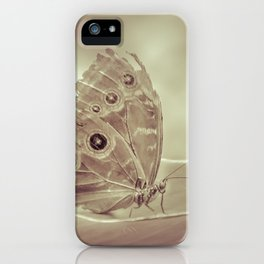 Patterned Wings Butterfly Over Leave iPhone Case