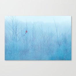 A Late Sign Of Autumn Canvas Print