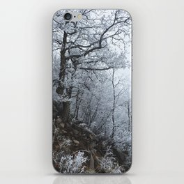Blizzard // #TravelSeries iPhone Skin