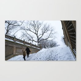 Snow in Central Park X Canvas Print