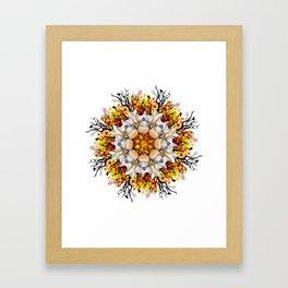 orange halloween mandala Framed Art Print