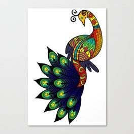 Coy peacock Canvas Print