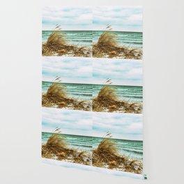 Frigid Wallpaper