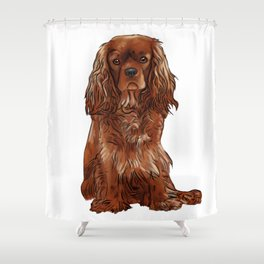 Cavalier King Charles Spaniel - Ruby Shower Curtain