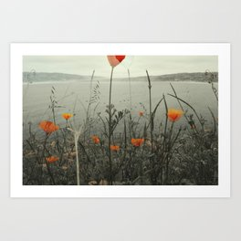 Poppies Shifted Art Print