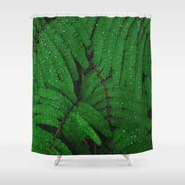 Layers Of Wet Green Fern Leaves Patterns In Nature Shower Curtain