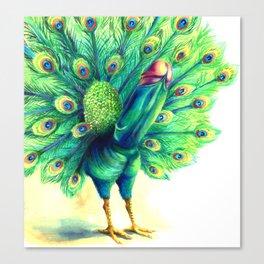 Peacock  falo real Canvas Print