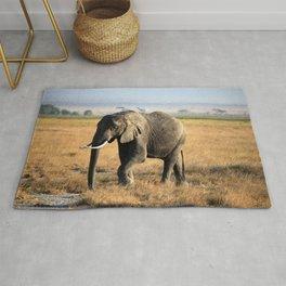 Africa Elefant Desert Kenia Rug