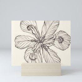 Floral Ink Illustration Mini Art Print