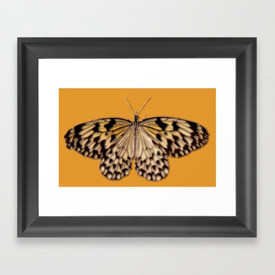 Untitled Butterfly #5 Framed Art Print