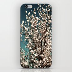 Winter Blossoms iPhone & iPod Skin