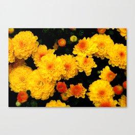 Golden Dew Drops. Canvas Print
