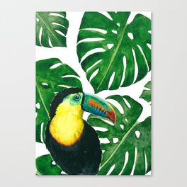 Toucan parrot with monstera leaf pattern Canvas Print