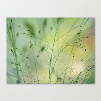 grass Canvas Prints featuring Grass by Lena Weiss