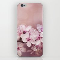 cherry blossom iPhone & iPod Skins featuring Cherry Blossom by LebensART Photography