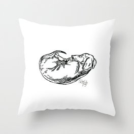 Sleeping Dachshund Throw Pillow