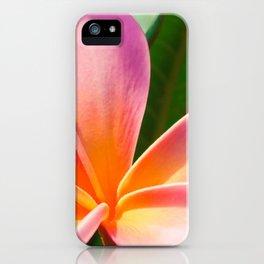 Pua Melia ke Aloha Pink Tropical Plumeria Maui Hawaii iPhone Case
