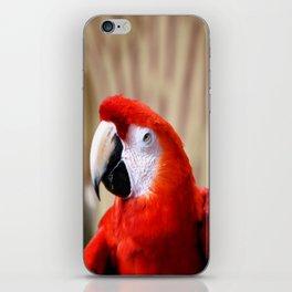 Red Macaw iPhone Skin