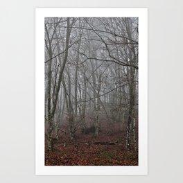 Dark forest. Art Print