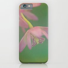 Delicate Beauty Slim Case iPhone 6s