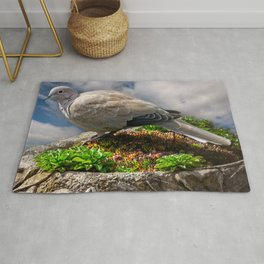 Collared Dove Rug