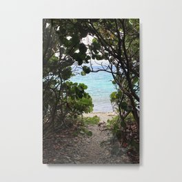 Sea Grape Window Metal Print