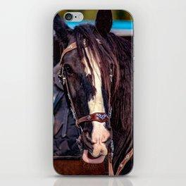 Concept Kaltblutmarkt 2018 : Horse eyes iPhone Skin