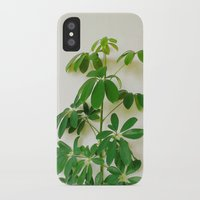 plant iPhone & iPod Cases featuring Plant by sakinarawr