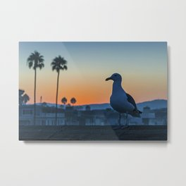 Sunrise Seagull Metal Print