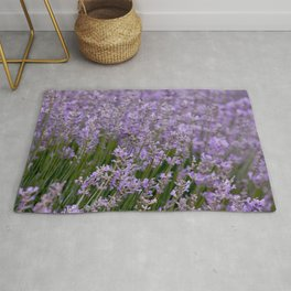 Lavender field, violet beauty, landscape view Rug