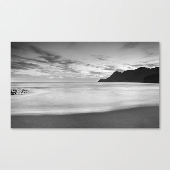 Silver sea. BN Canvas Print
