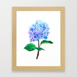 blue purple hydrangea Framed Art Print