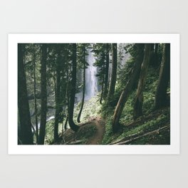 To The Falls Art Print