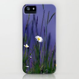 Hiding in the long grass iPhone Case